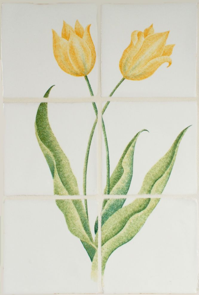Hand painted Tulip