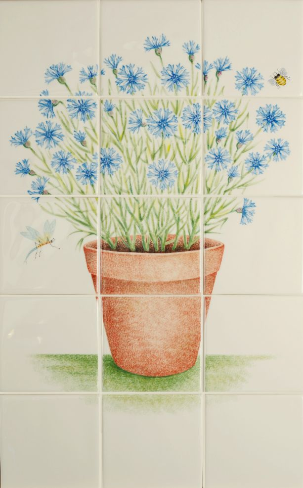 Terracotta Pot with Cornflowers
